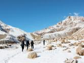 5 brothers go to Leh-Ladakh