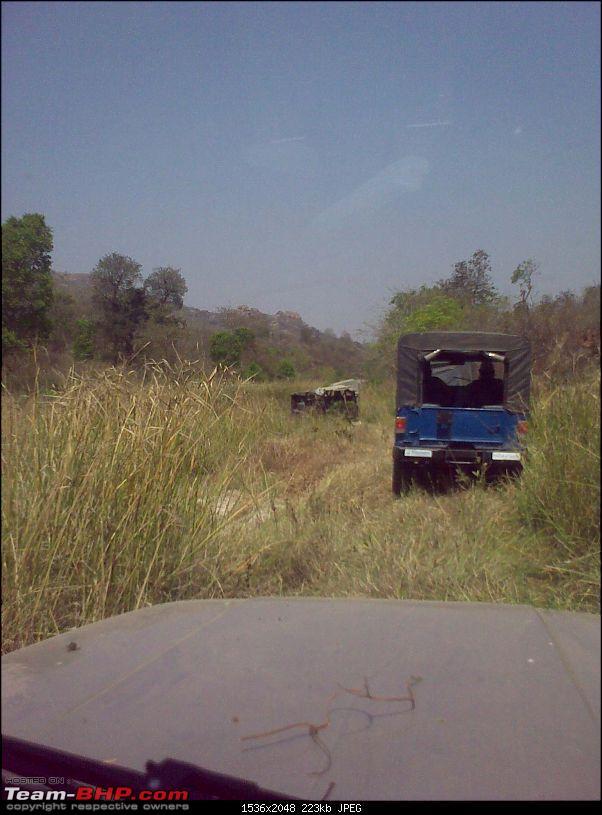 Pics, Vids & Report : Savandurga Trail - Bangalore 4x4-01032009341.jpg