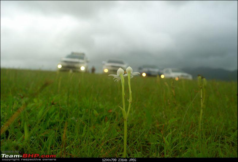"""Fortuners in search of Heaven through the """"Slopes of Hell"""" !-_dsc0683.jpg"""