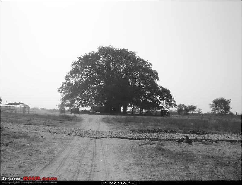 PICS from NIOC OTR - 14 March'09-dsc07979.jpg