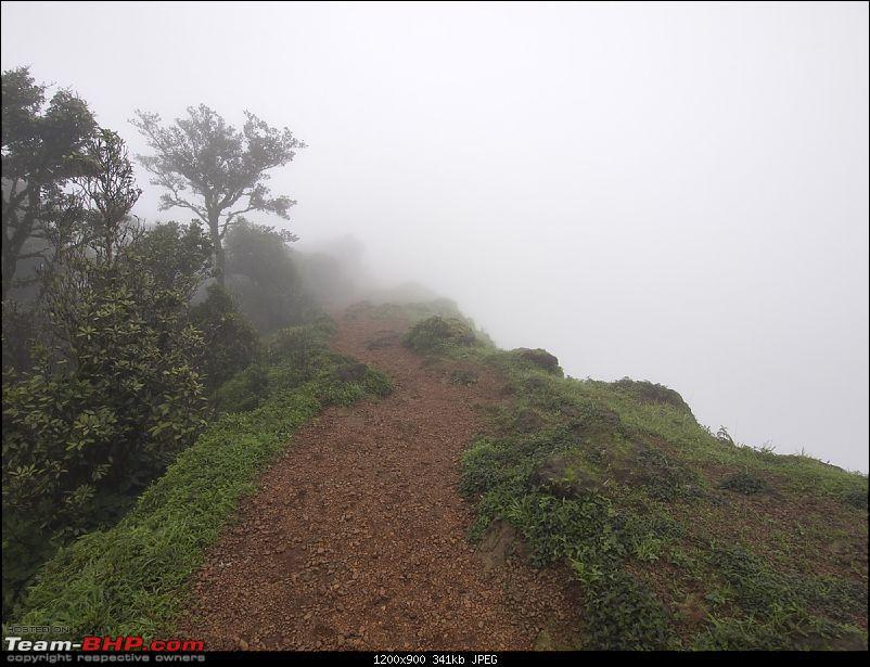When Offroaders Chill at Kodachadri-p8191054.jpg