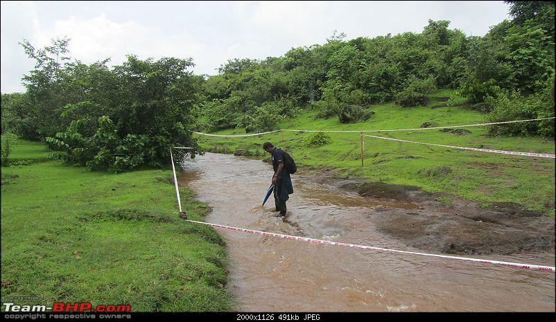Report: The 2015 Rain Forest Challenge @ Goa-ss16-stream.jpg