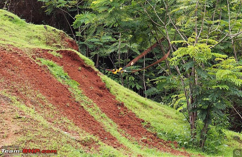 Report: The 2016 Rain Forest Challenge @ Goa-p7260174.jpg