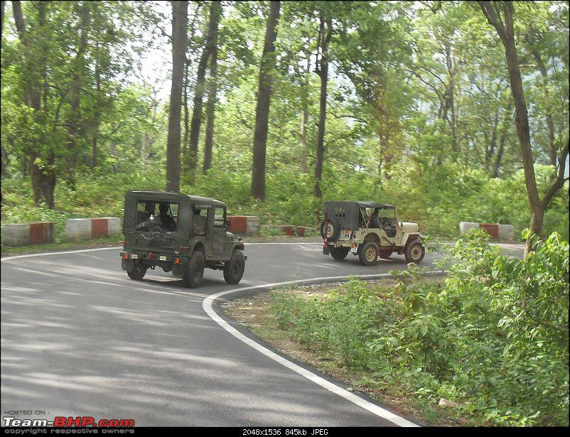 NIOC goes to Corbett Park-sdc13810.jpg