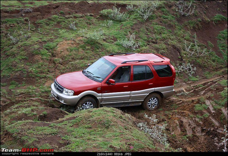 OTR Report: (Bangalore) Arenara-Indlibele Lake Bed, 23 Aug 2009-img_9910.jpg