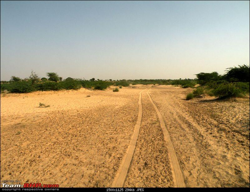Offroad trips in and around western Rajasthan...-picture-1675.jpg