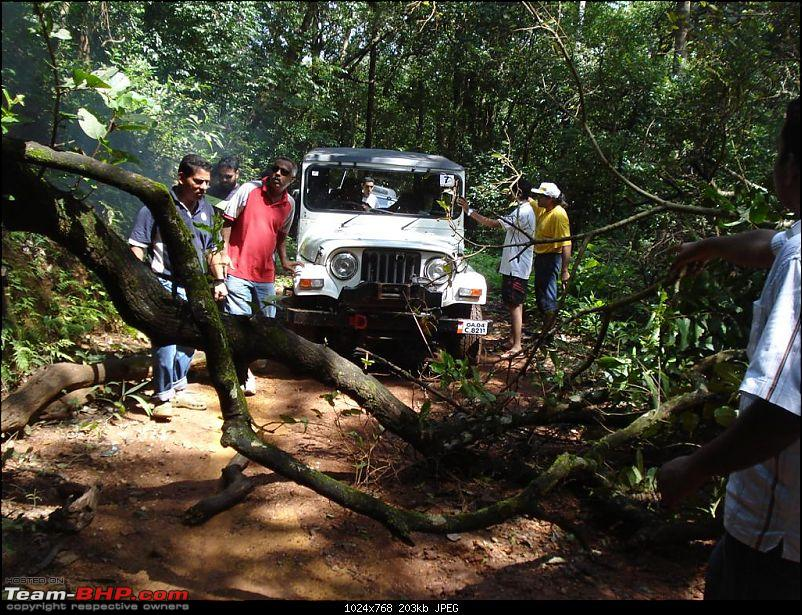 Mud Plunging GOA STYLE-tree-break.jpg