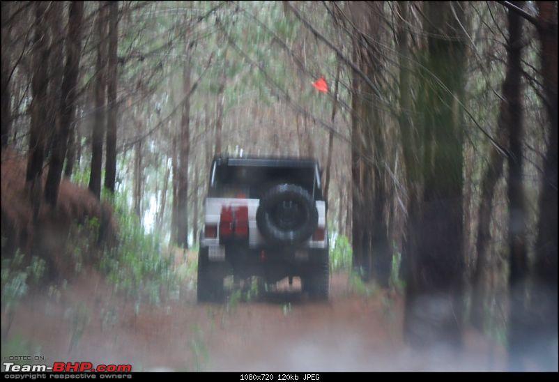 Munnar Monsoon Magic! Updated!-mmm146.jpg