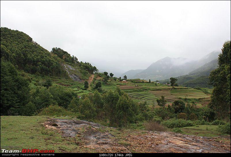 Munnar Monsoon Magic! Updated!-mmm253.jpg