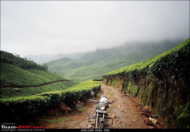 Munnar Monsoon Magic! Updated!-r003030.jpg