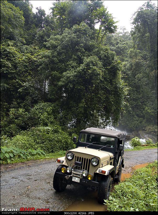 Sharavathy Valley OTR-_7246395.jpg