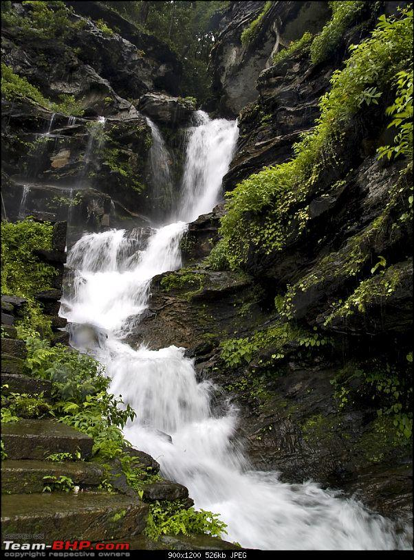 Sharavathy Valley OTR-_7246434.jpg