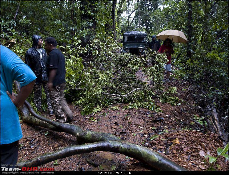 Sharavathy Valley OTR-_7246442.jpg