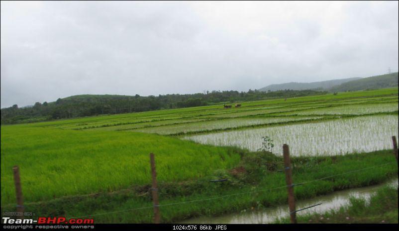 Sharavathy Valley OTR-img_3464.jpg