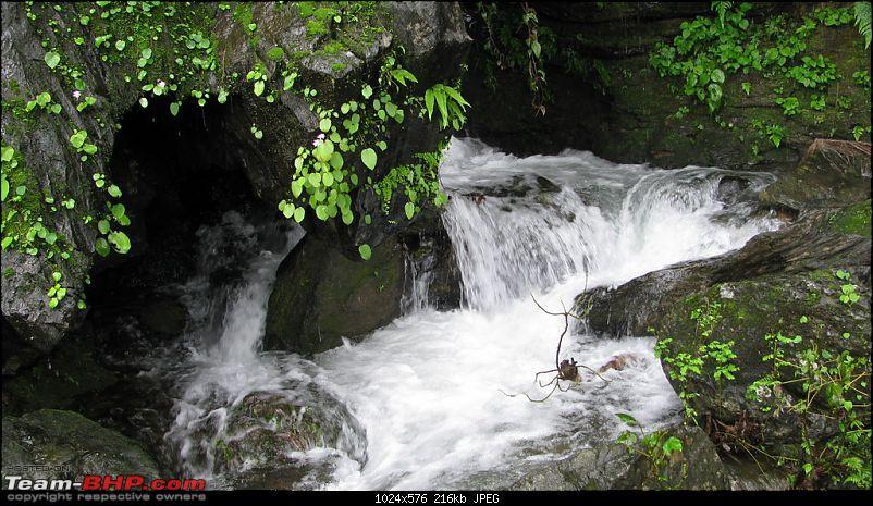 Sharavathy Valley OTR-img_3544.jpg