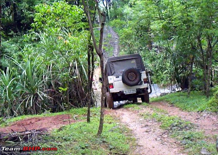 Name:  NATURE RIDERS 4x46.jpg