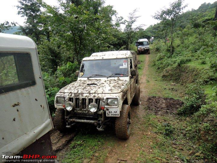Name:  NATURE RIDERS 4x412.jpg