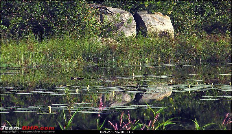 Thippagondanahalli OTR-thippagondanahalli-lake.jpg