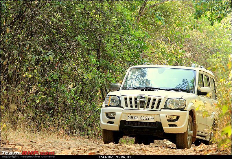 Rajmachi Softroading Trip March 11th-img_0111.jpg