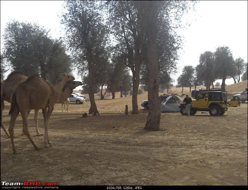Offroading images from Dubai-shweib_0212.jpg