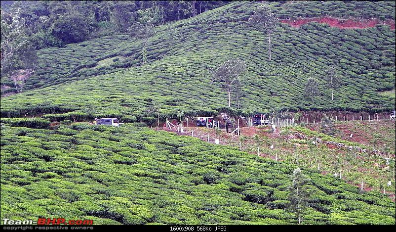 Wayanad OTR - July 2012: A Report!-dscn7664-copy.jpg