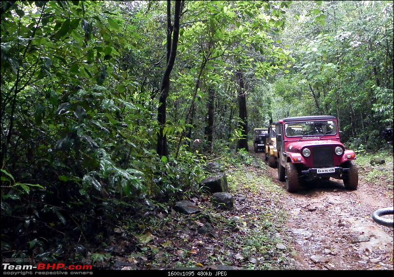 Wayanad OTR - July 2012: A Report!-dscn7682-copy.jpg