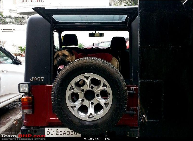 Never thought I'd buy a Mahindra Thar! My Jeep Story. EDIT: Now sold-20140215_103243.jpg