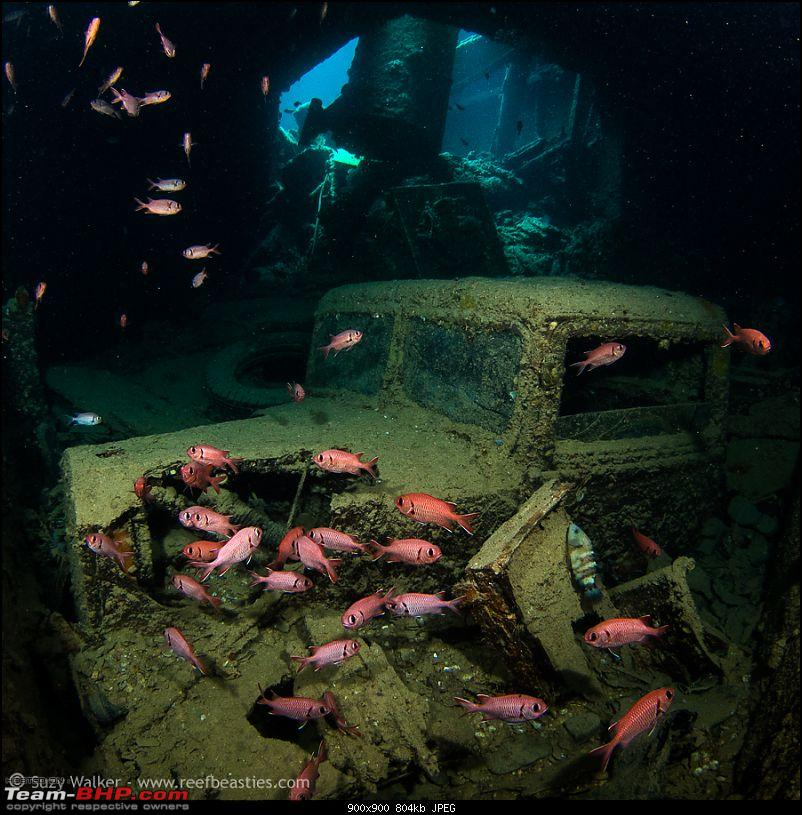Sunken Treasures - Classic cars at the bottom of the sea-sunken-t-2.jpg