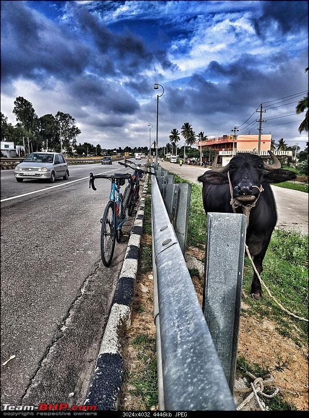 Post pictures of your Bicycle on day trips here!-pxl_20210724_024215365.mp01.jpeg