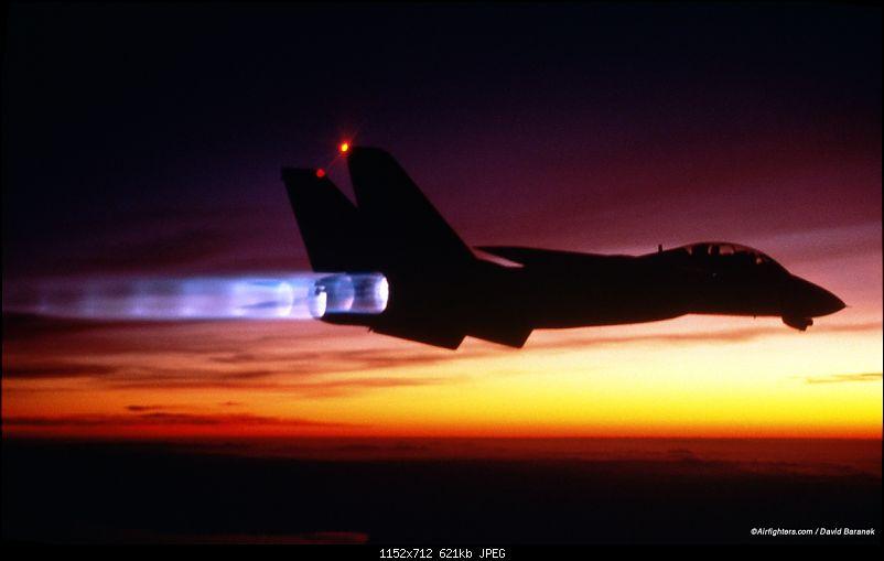 Defender of the fleet - The Grumman F-14 Tomcat-f14_with_burner2.jpg