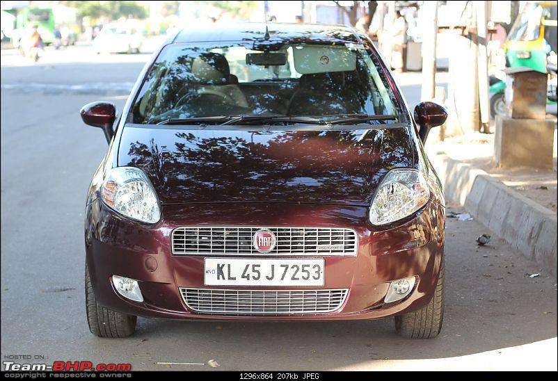 My Fiat Punto 90Hp Accident: Head-on collision with a Tree-tumblr_back009.jpg