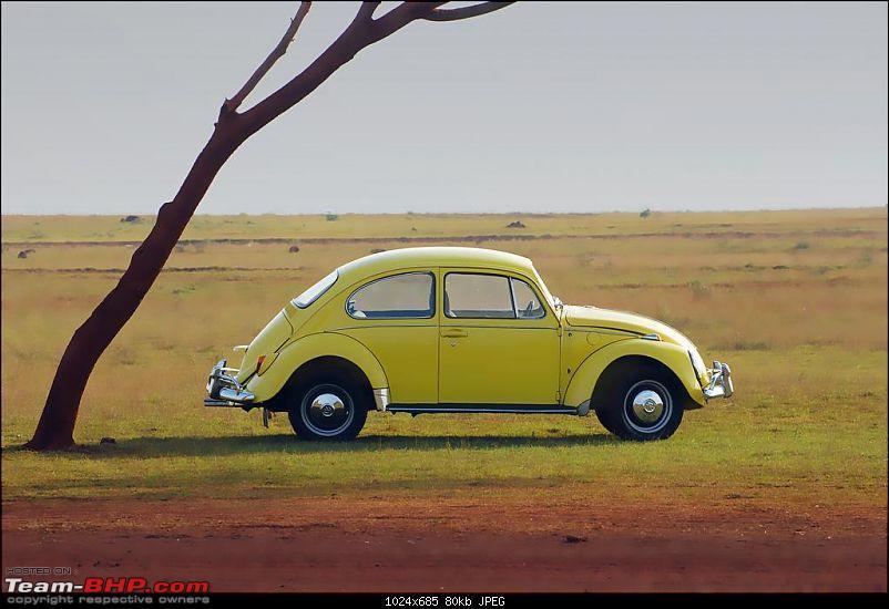 The Auto-Image thread-dsc_6633-large.jpg