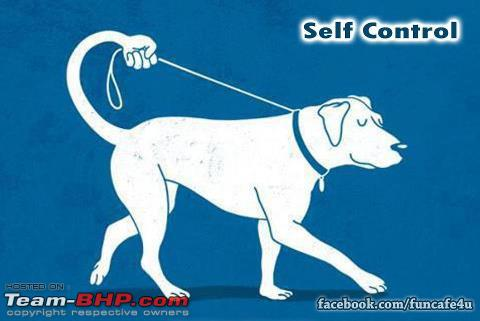 Name:  selfcontrol.jpg