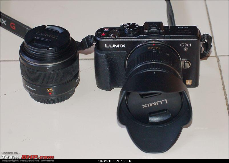 Mirrorless or EVIL Cameras-gx125.jpg
