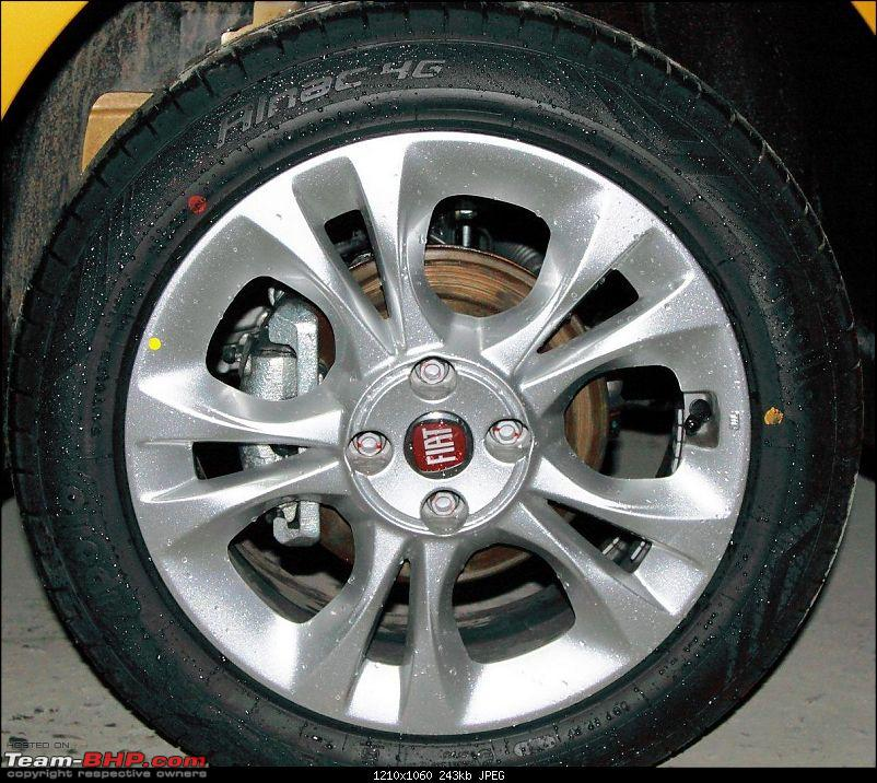 2014 Fiat Punto Evo : A Close Look-img_5599.jpg