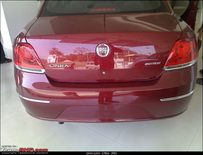 Fiat Linea has arrived-boot.jpg