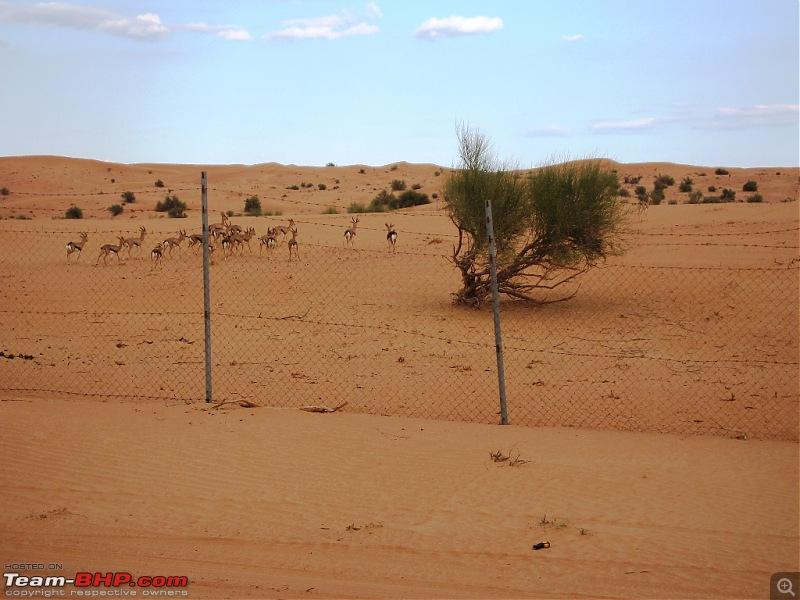 My Automotive Life in Dubai - Memoirs of a Decade-d-11.jpg