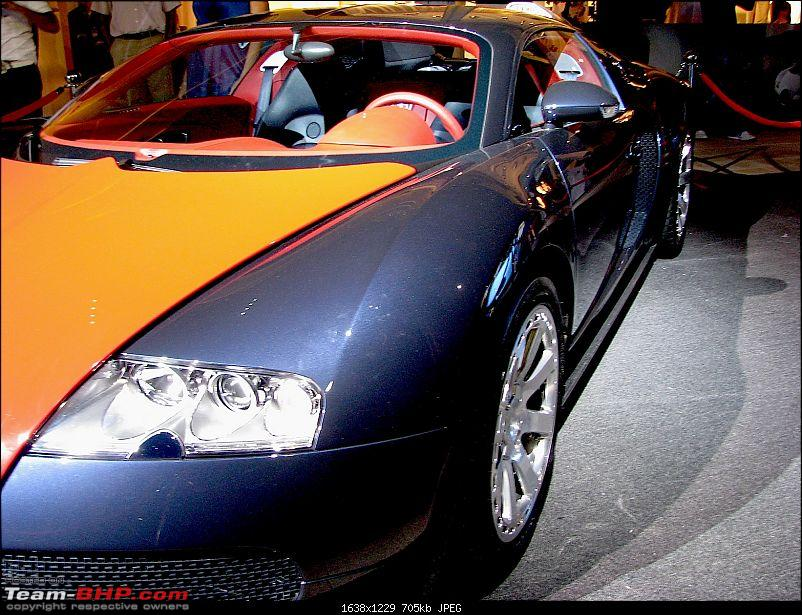 Exotics in Qatar-img_3654.jpg
