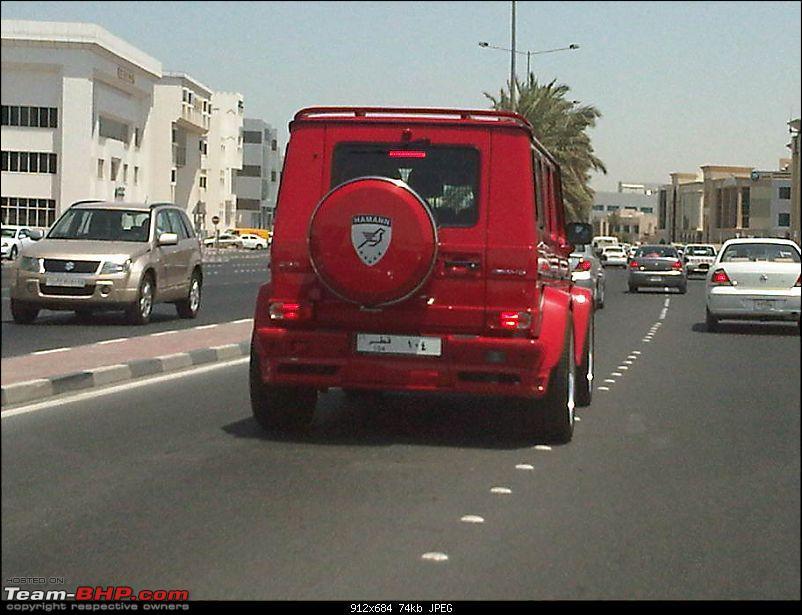 Exotics in Qatar-img00068201105291241.jpg