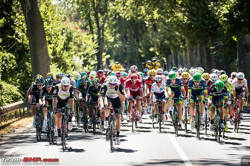 Tour de France 2016-13692946_1049687855080593_4548319961294721849_o.jpg