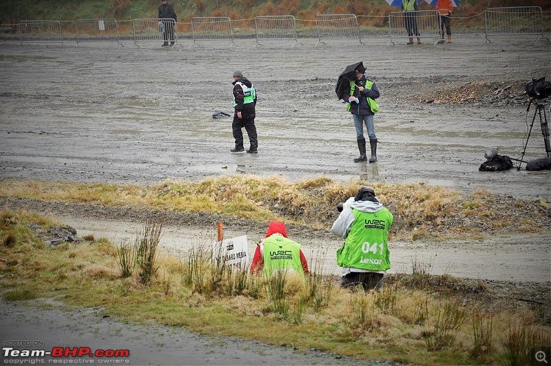 WRC Wales Rally GB, 2016-1.jpg