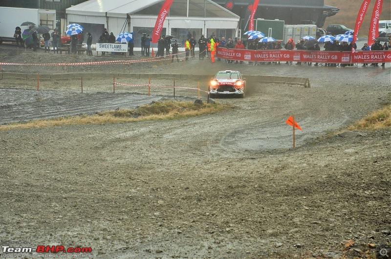 WRC Wales Rally GB, 2016-31.jpg