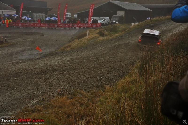 WRC Wales Rally GB, 2016-38.jpg