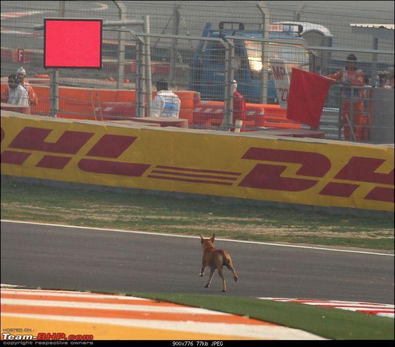 Updates on the Indian F1 track (Buddh International Circuit)-391709_10150354103406395_658151394_8386012_330425444_n.jpg