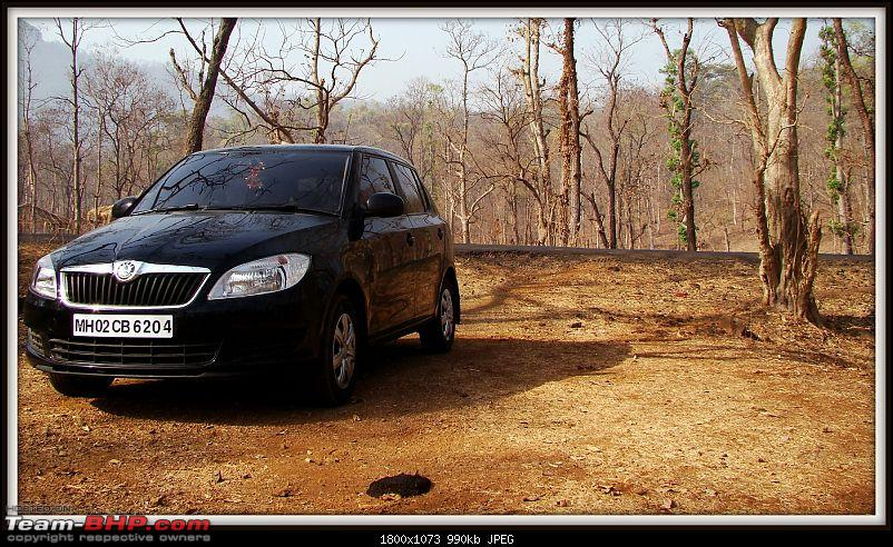 When Cars are in your DNA, you buy this - Skoda Fabia 1.2L TDI CR. 27,000 kms review-dsc06243.jpg