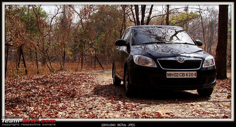 When Cars are in your DNA, you buy this - Skoda Fabia 1.2L TDI CR. 27,000 kms review-dsc06335.jpg