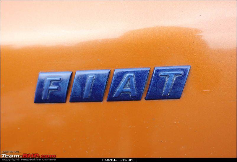 Embarking on an Adventure: My pre-owned Fiat Adventure-23.jpg