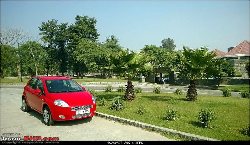 Fiat Grande Punto: 50 months & 90,000 kms. EDIT: Now sold-img-407.jpg