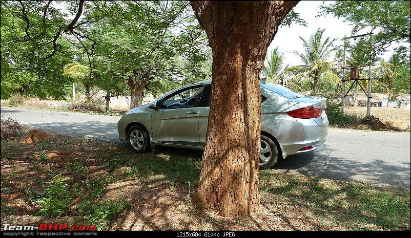2014 Honda City – My Diesel Rockstar Arrives. EDIT: Now with LED upgrade-p1170296.jpg