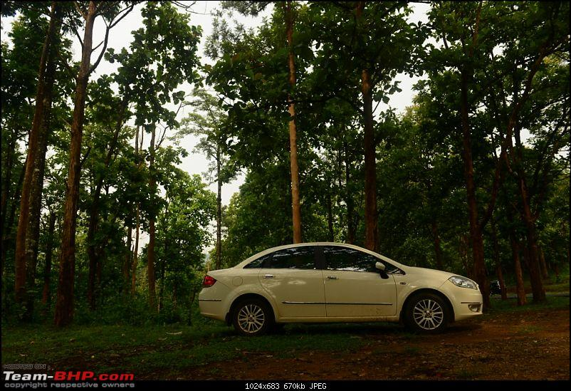 A Poetry on Wheels - My Fiat Linea MJD-dsc_3404.jpg